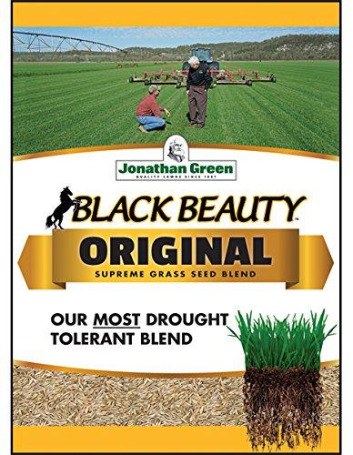Johnathan Green Black Beauty