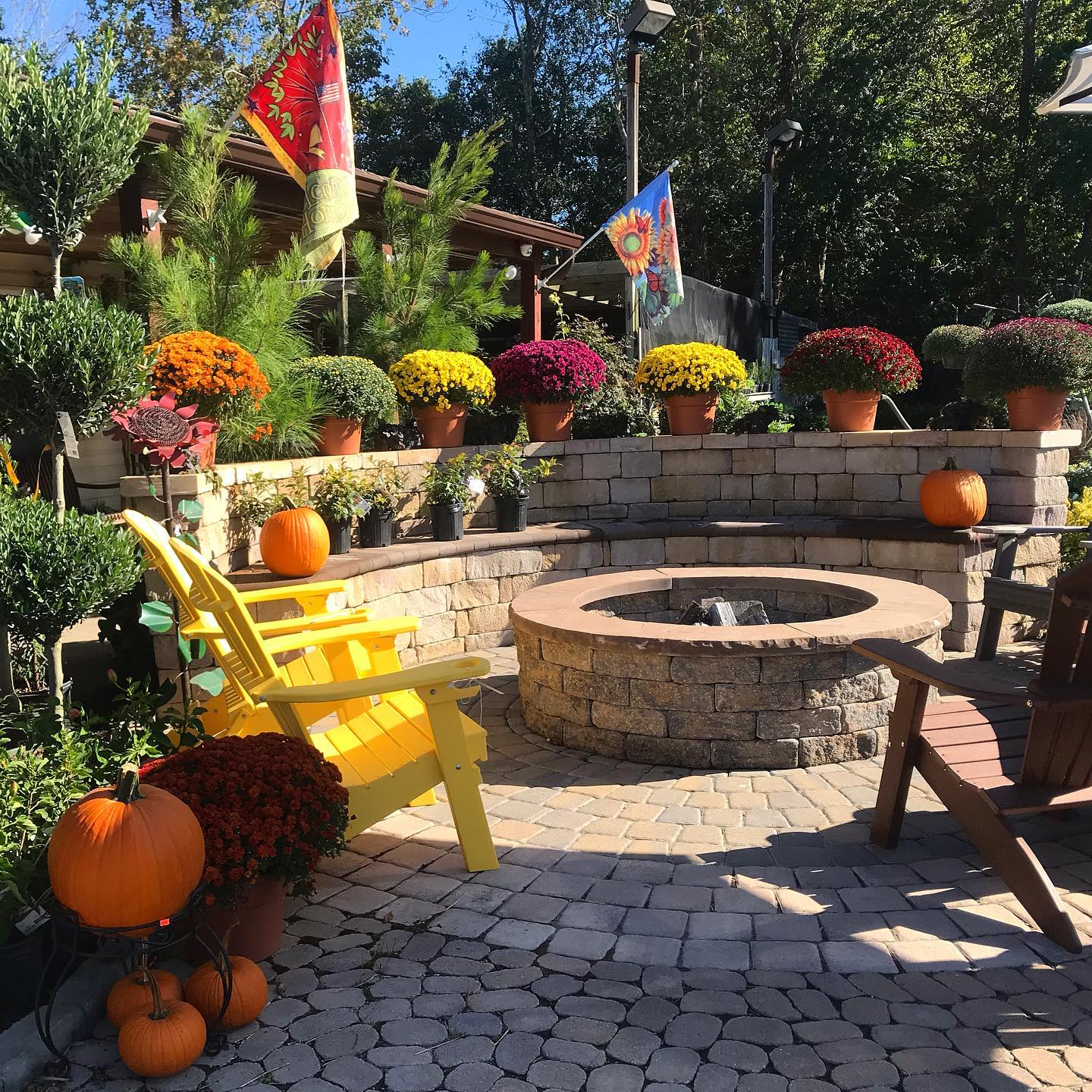 fall time at Jack Frost garden center